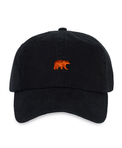 Element Youth Ca Bear Cap, Washed Black